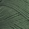 Brown Sheep Nature Spun Worsted - 401W Pewter Green