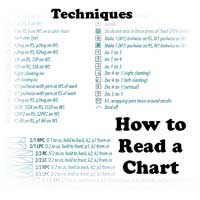 Techniques: How to Read a Chart (Call to Schedule)