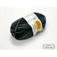 Regia Galaxy Jupiter Color Sock - 1561 Woodland